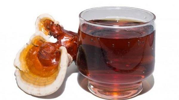 Nấm linh chi và tác dụng của nấm linh chi đối với sức khỏe