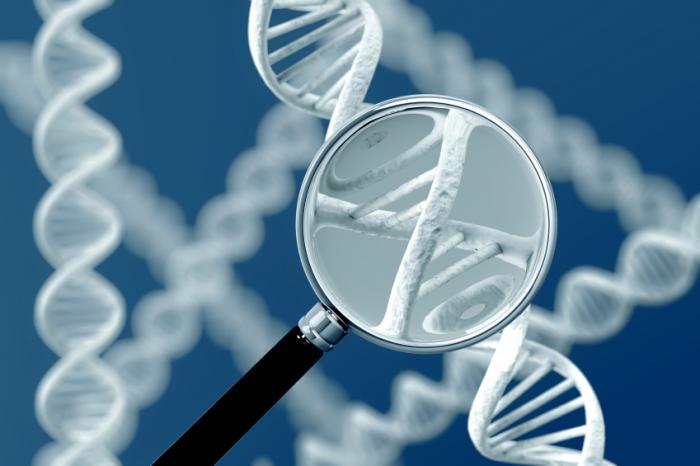 yếu sinh lý có di truyền không